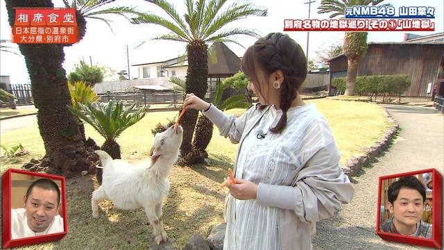 【山田菜々キャプ画像】温泉レポートや始球式等など元アイドルのお宝シーン 45