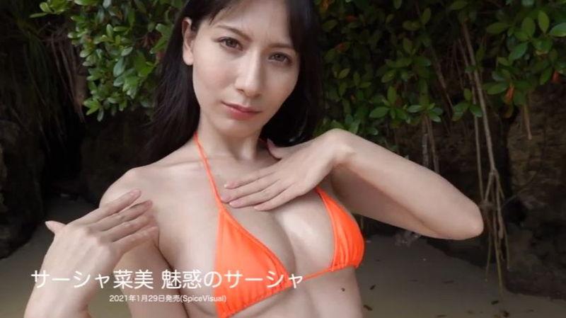 【サーシャ菜美キャプ画像】絵師グラドルを自称するロシアクォーター美女 34