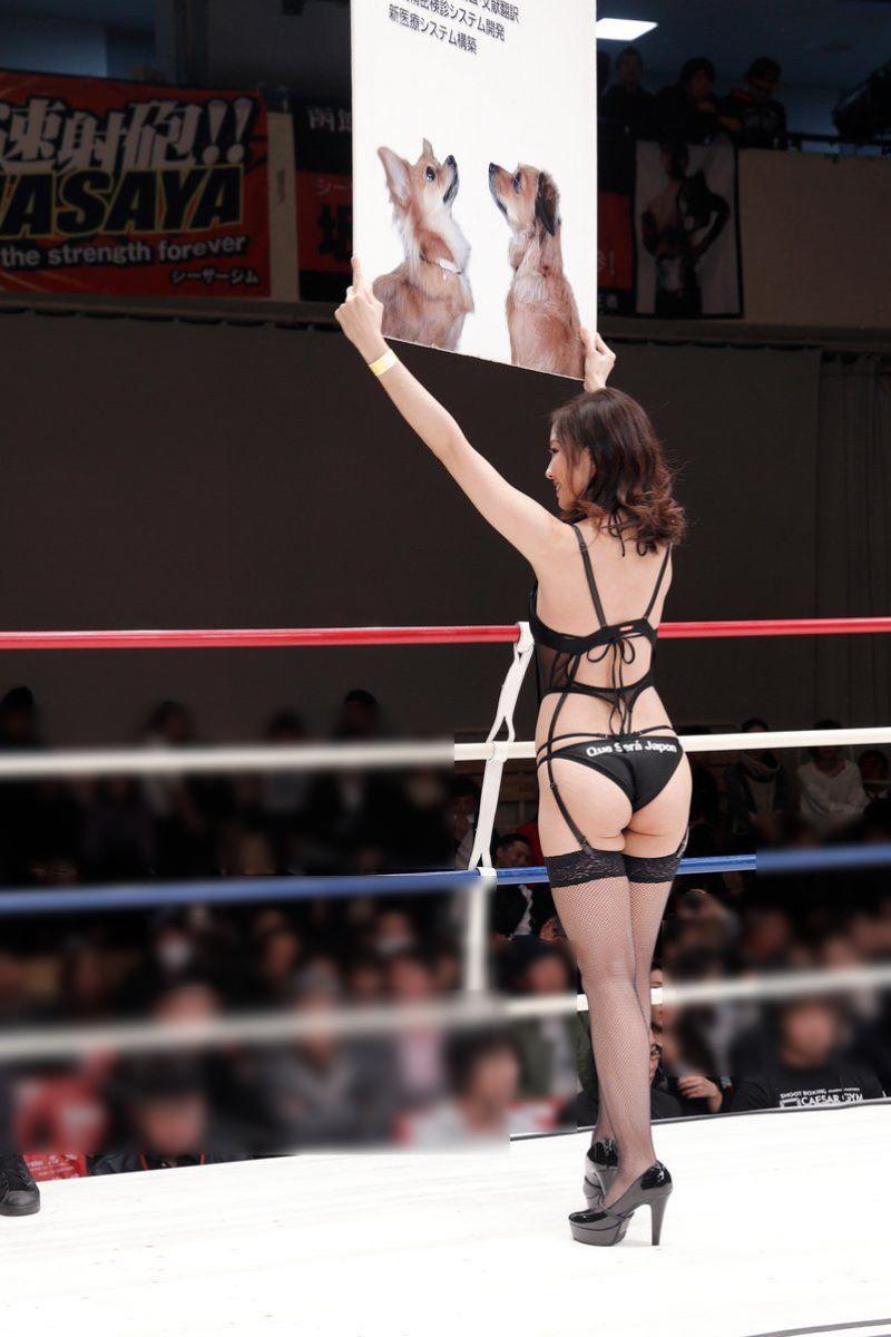 【ラウンドガールエロ画像】格闘技のリングを華やか彩る美女たち 45