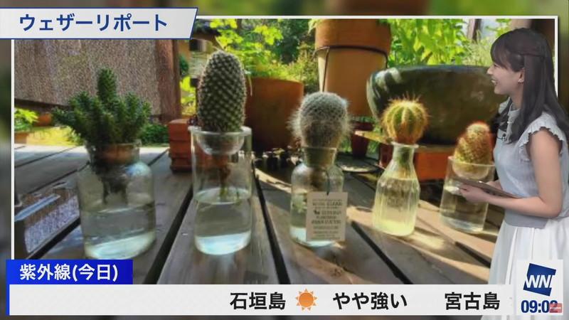 【女子アナキャプ画像】お天気お姉さんのニットおっぱい! 50