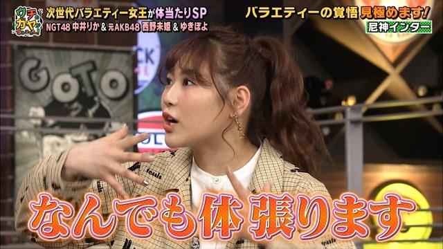 【西野未姫放送事故画像】元AKB48アイドルでありながらバラエティに身体張りすぎな女w 07