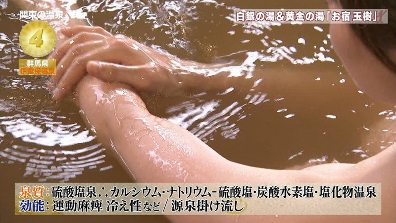 【温泉キャプ画像】アド街ック天国とかいう温泉や海で露出サービスしまくるエロ番組wwww 40