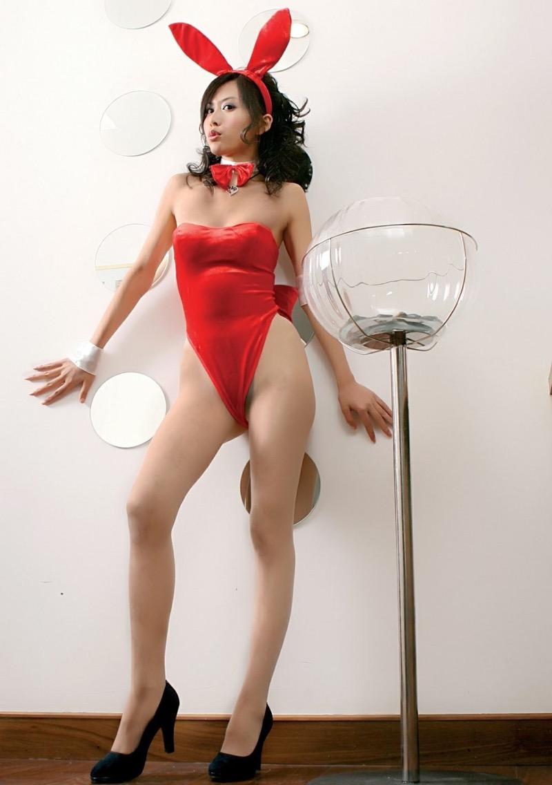 【バニーガール画像】セクシー美女がウサ耳着けてハイレグに網タイツを穿いてる姿がめちゃスコ! 69