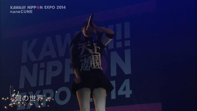 【ライブキャプ画像】Kawaii Nippon Expoがパンチラ祭りだったと聞いてwww 12