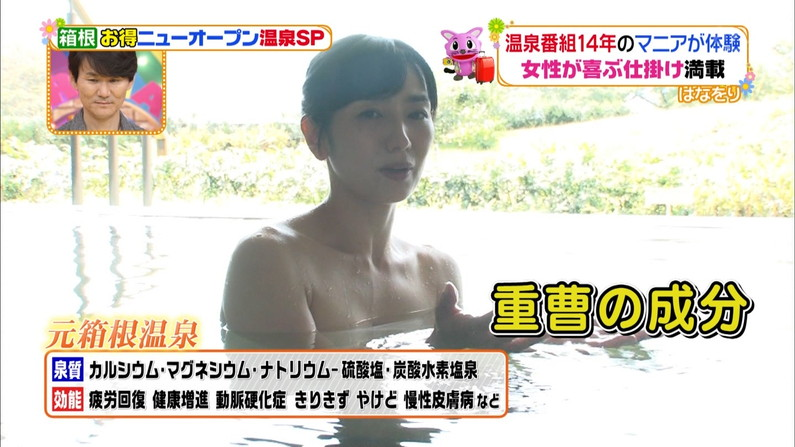 【温泉キャプ画像】必ずと言っていいほど温泉番組で巨乳アピールしてくるタレント達w 24